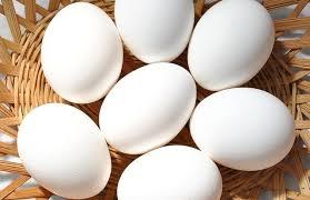 تجارت تخم مرغ دوزرده